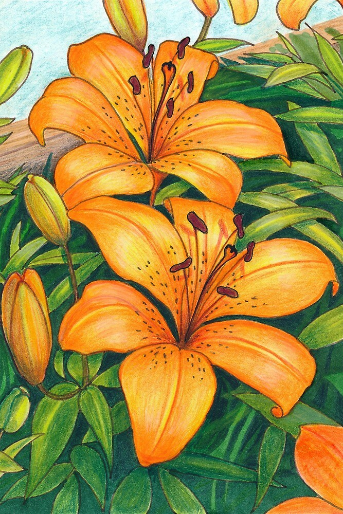 Tiger Lilies by Fairyworks