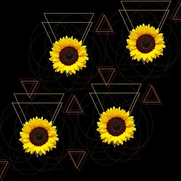 Sunflower Progression by studi03