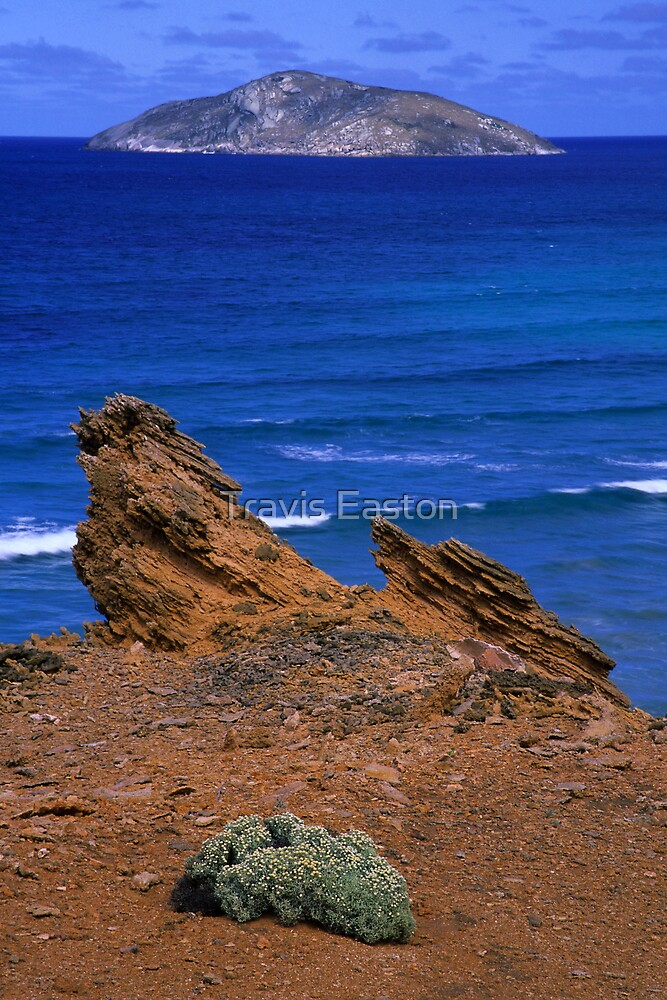 Shellback Island by Travis Easton