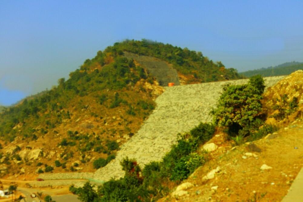 Landscae by Nilu Mishra