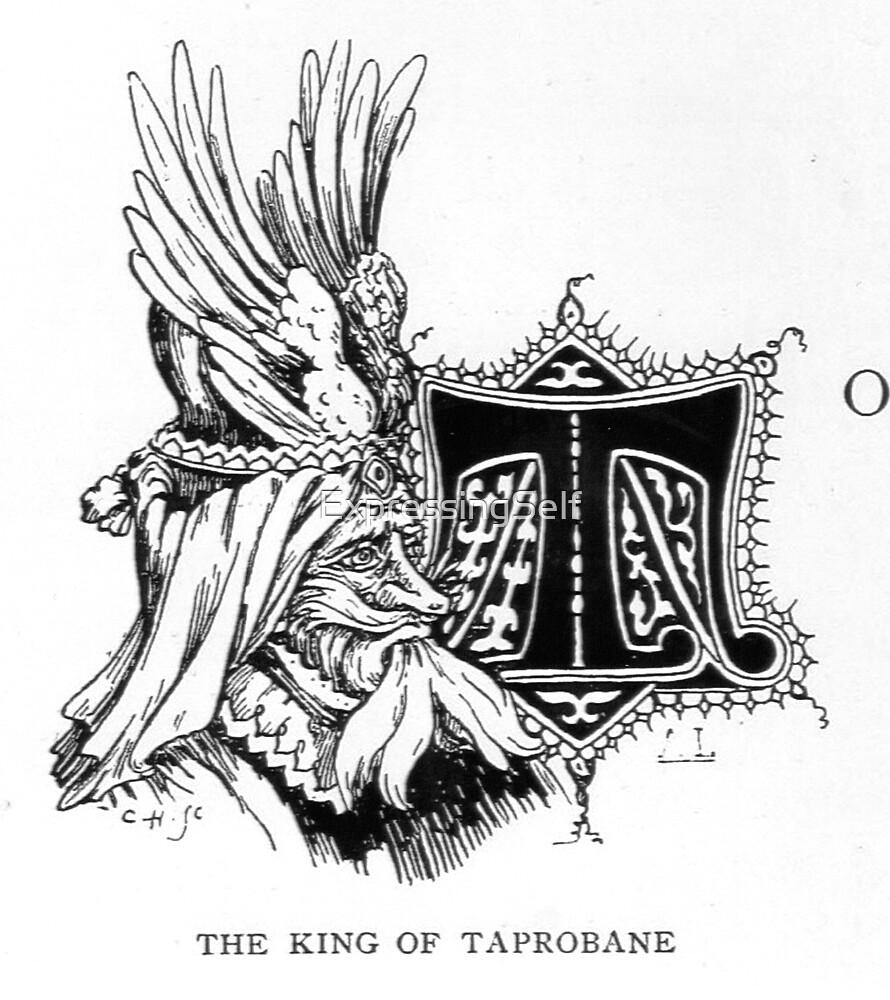 King of Taprobane Original Drawing Circa 1800s by ExpressingSelf