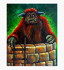 Ludo ( Labyrinth) Photographic Print