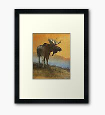 back off-- american moose Framed Print