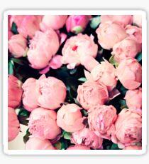 Paris Pink Peonies  Sticker