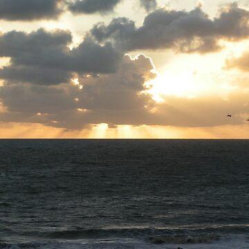 Sunrise - Sunshine Coast, Queensland, Australia by artbyjanelucas