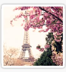 Paris, Eiffel tower and Cherry Blossoms  Sticker