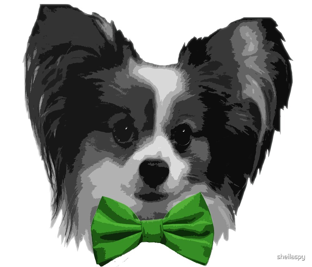 Dapper Papillon with Green Bowtie by sheilaspy