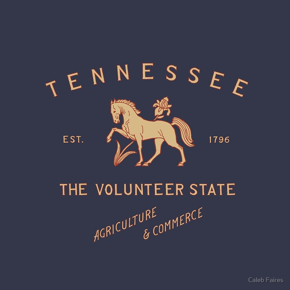 TN -Tennessee State Animal Walking Horse by Caleb Faires
