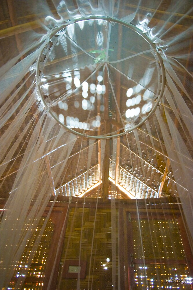 Mosquito Net by photogr