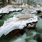 River of Ice by Brian Carey