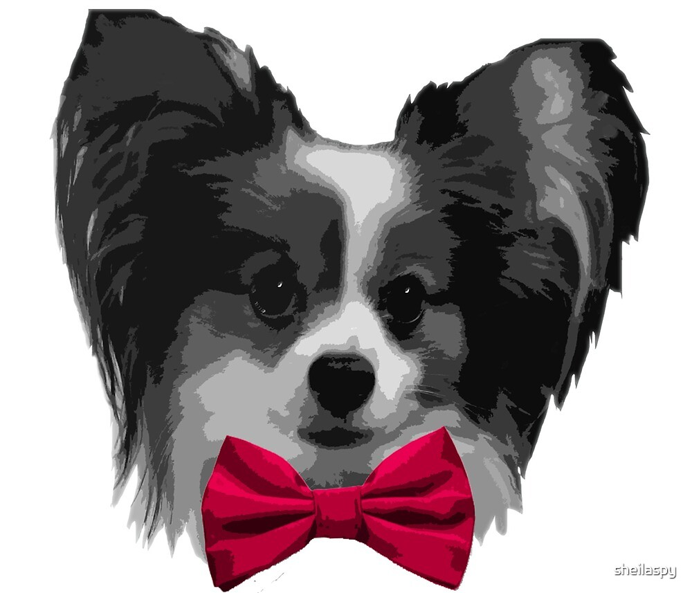 Dapper Papillon with Magenta Bowtie by sheilaspy