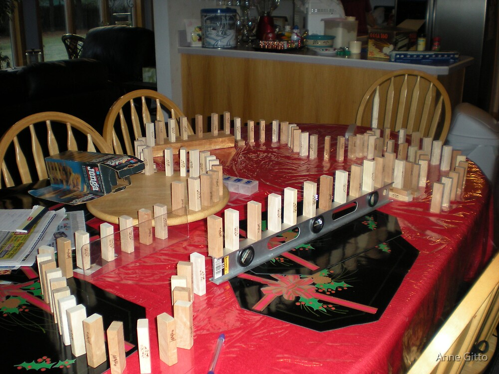 The Domino Effect by Anne Gitto