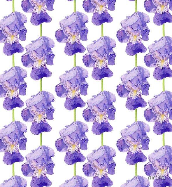 Purple Iris by Mariana Musa