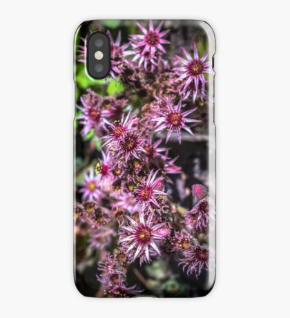 SIZZLERS [iPhone-kuoret/cases] iPhone Case