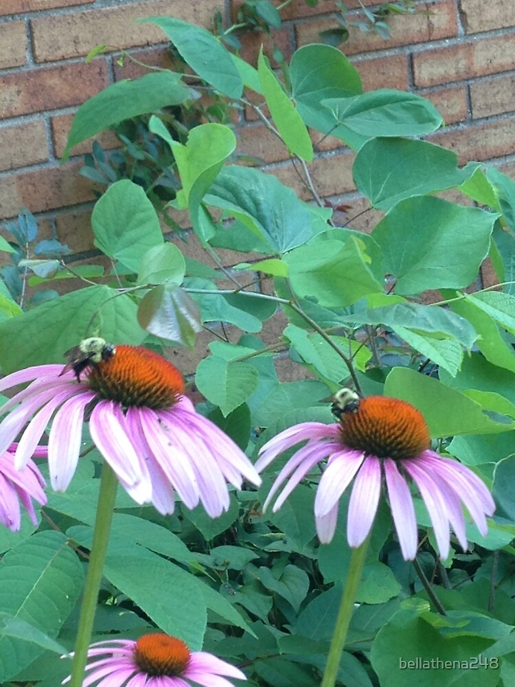 Bees in the Spring by bellathena248