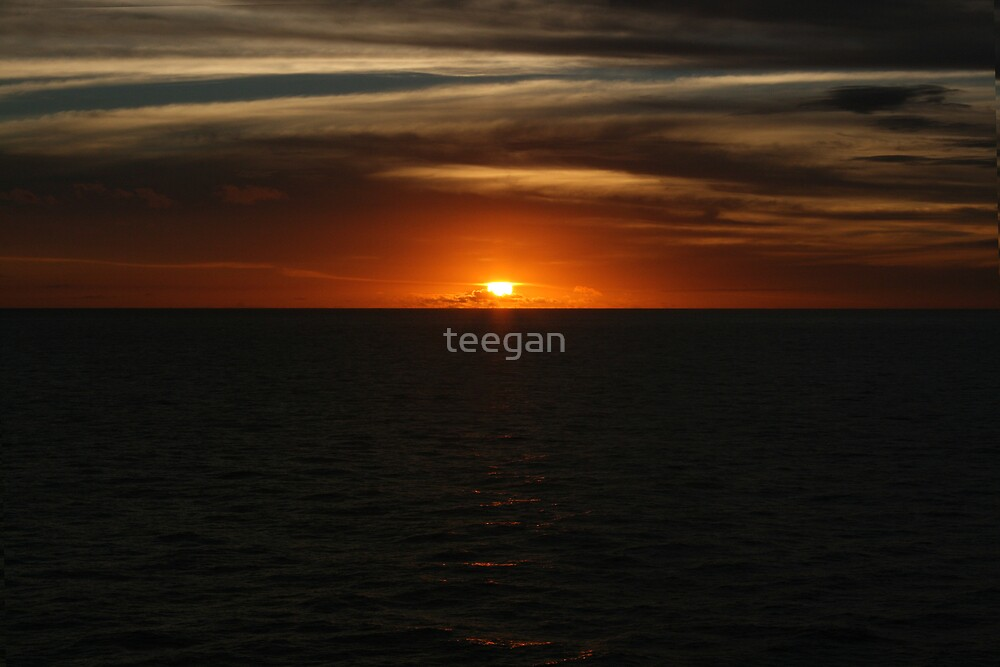 orange bliss  by teegan