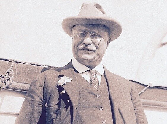 Roosevelt by BindysBags