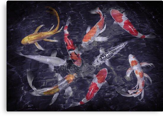 koi fish oil paintings by ADZKIYYA DESIGN