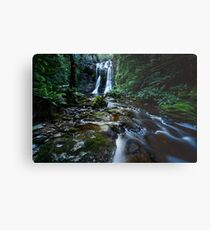 Falls in Rainforest Metal Print