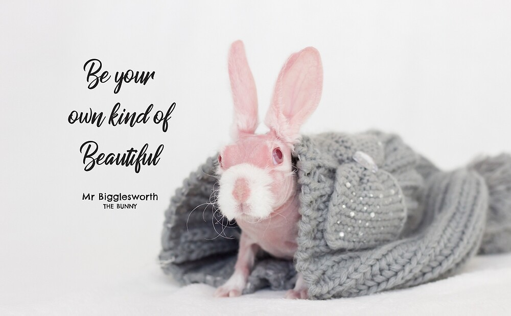 Mr Bigglesworth the bald rabbit - Be Your Own Kind of Beautiful by mrbigglesworth