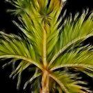 Fractal Palm Tree by Teresa Zieba