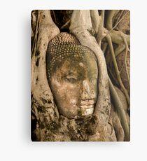 Budda Head in Roots Metal Print