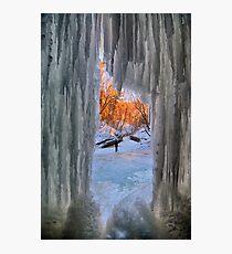 Through the Ice Window Photographic Print
