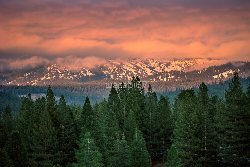 Conifer Mountains by wasabi67
