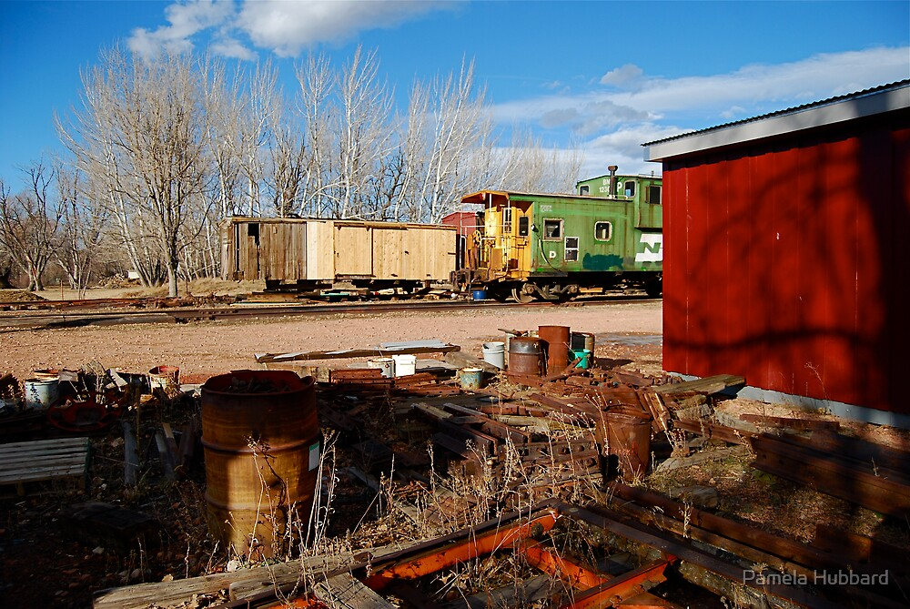Train Restoration Site by Pamela Hubbard