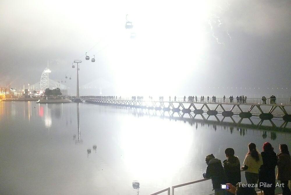 THE LIGHT OF 2009 by terezadelpilar ~ art & architecture