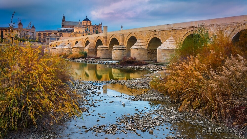 Puente Romano Cordoba by Ralph Goldsmith