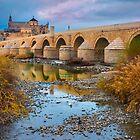 Puente Romano Cordoba by Ralph Goldsmith