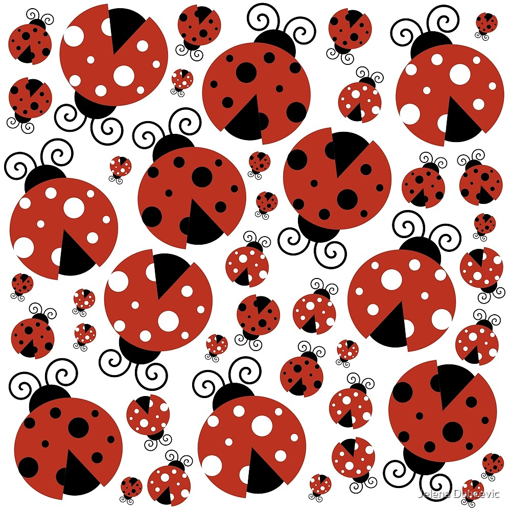 Ladybugs (Ladybirds, Lady Beetles) - Red Black by sitnica