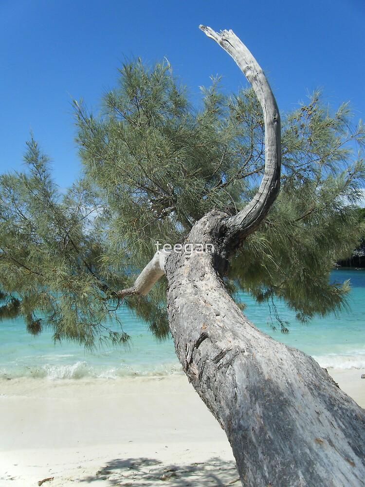 isle of pines  by teegan