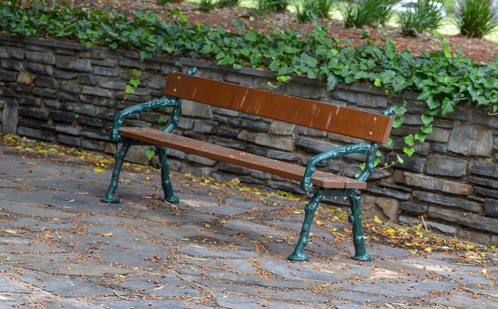 Park bench by Indigo73