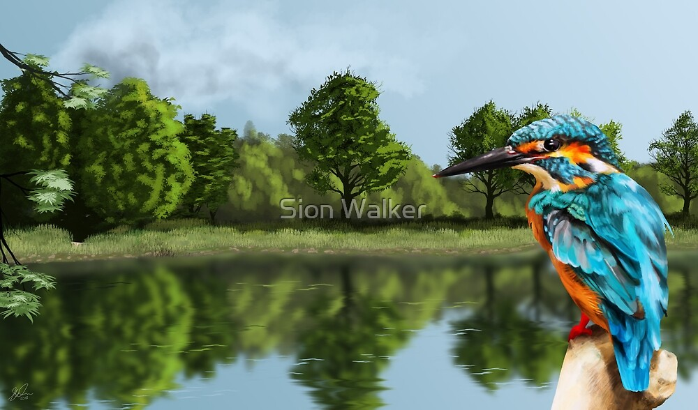Kingfisher painting by Sion Walker