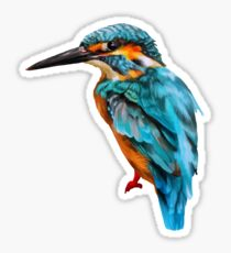 kingfisher painting no background Sticker