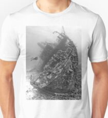 Giannis D BW - Background Story T-Shirt