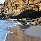 The Caves - Caves Beach by Bev Woodman