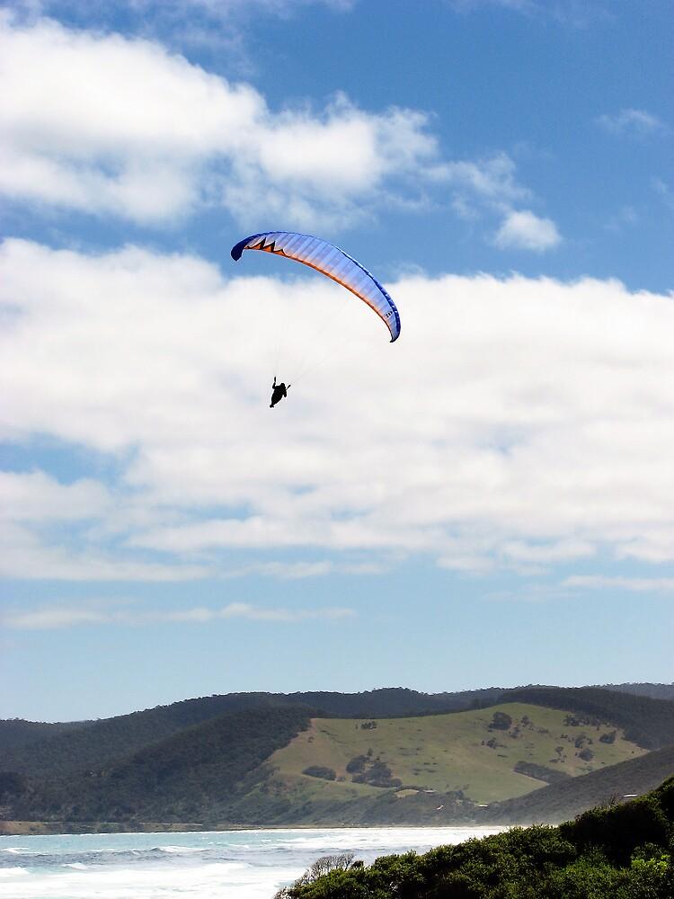 Paraglider by DaveLambert