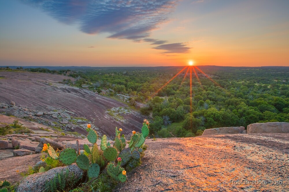 Texas Hill Country Prickly Pear 1 by RobGreebonPhoto