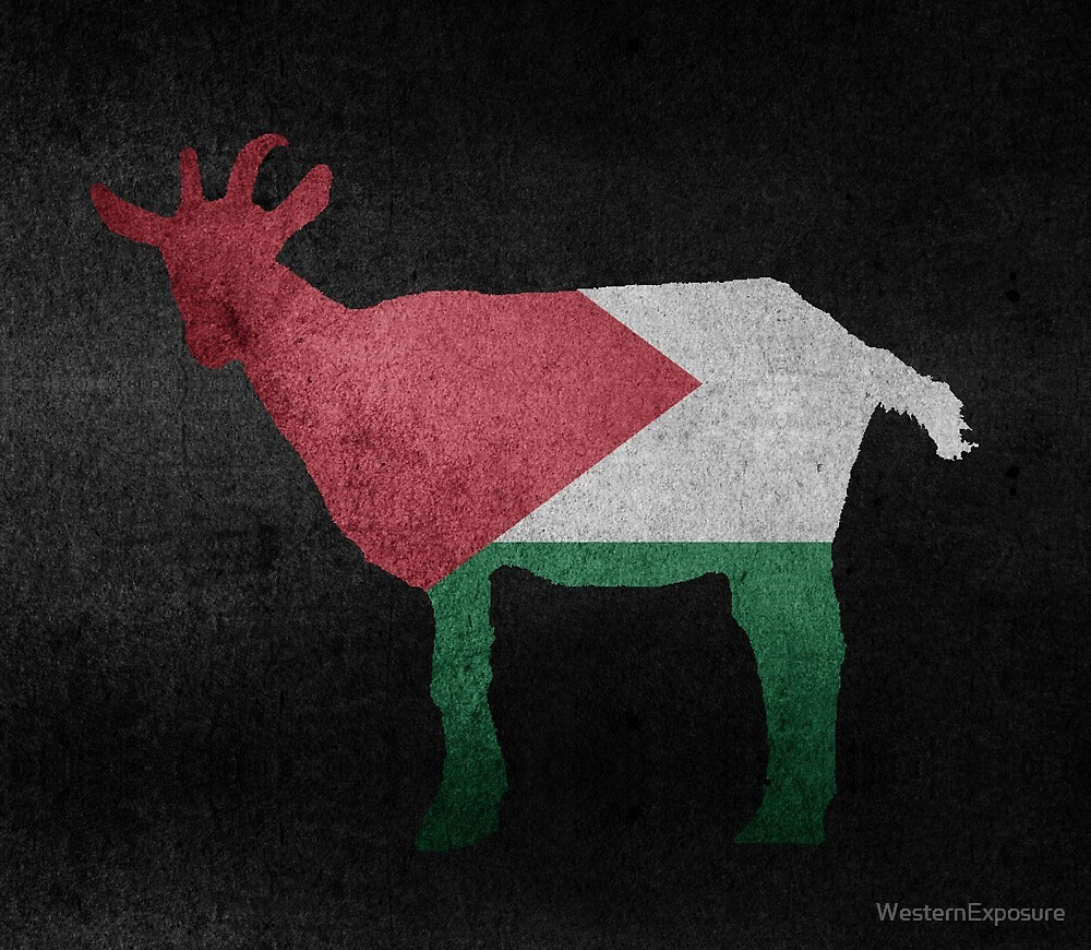 Palestinian Goat by WesternExposure