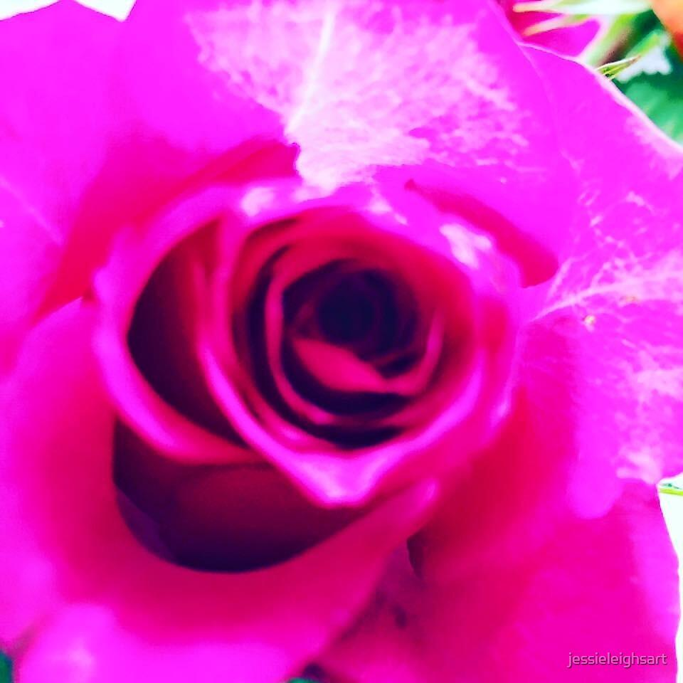 PINK ROSE by jessieleighsart