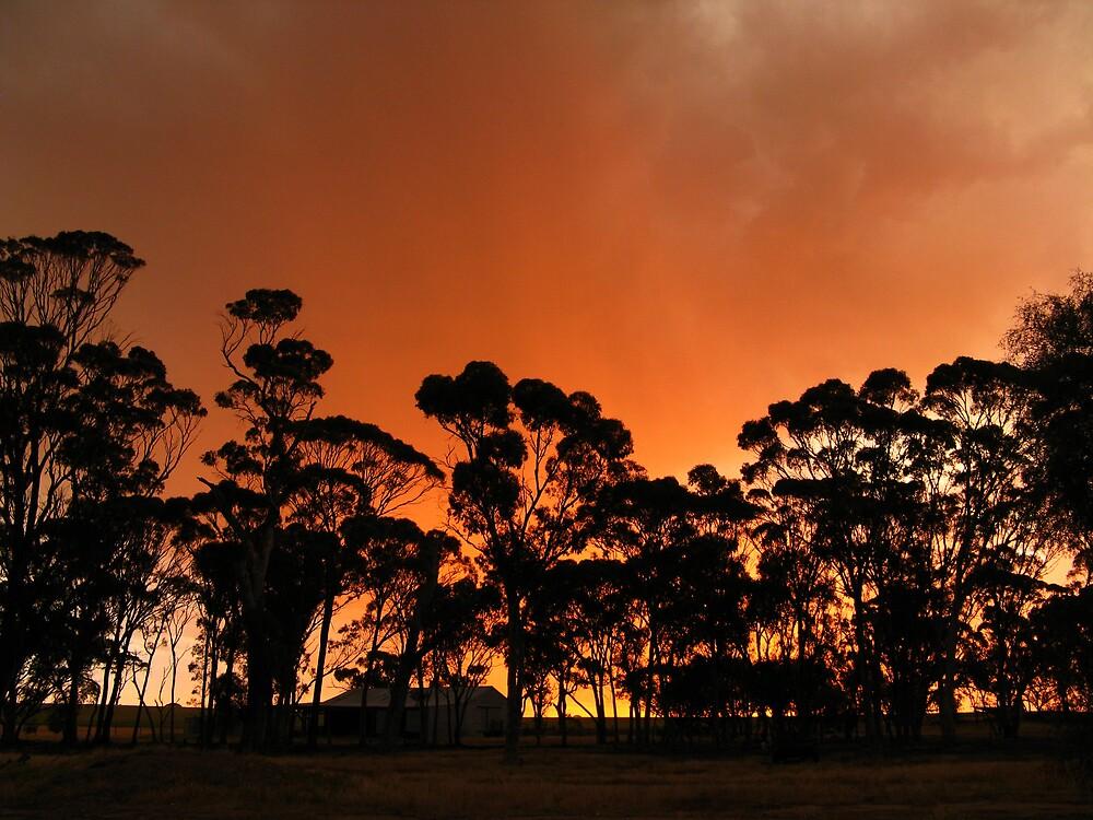 Sunset 06 by AlisonOneL