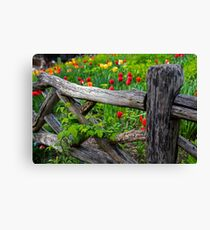 Central Park Shakespeare Garden New York City NY Wooden Fence Canvas Print