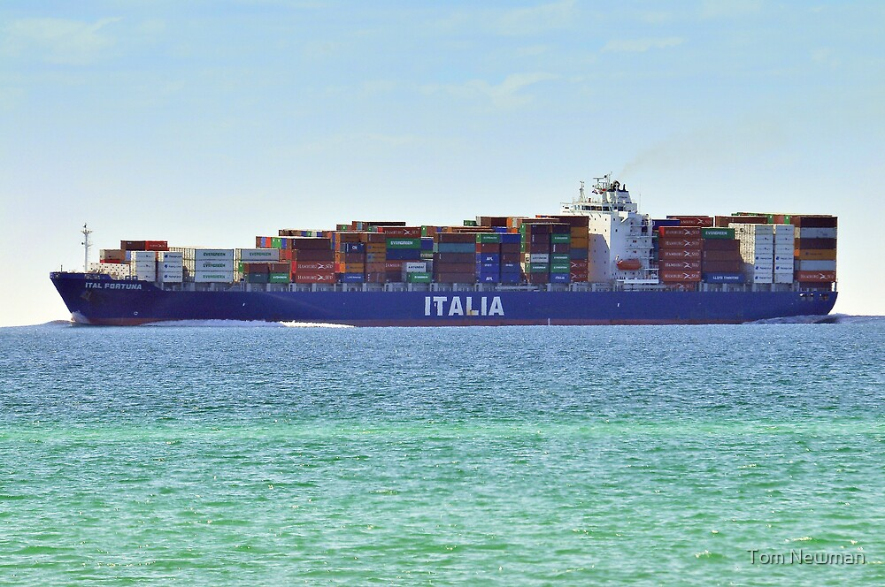Container Ship off McCrea by Tom Newman