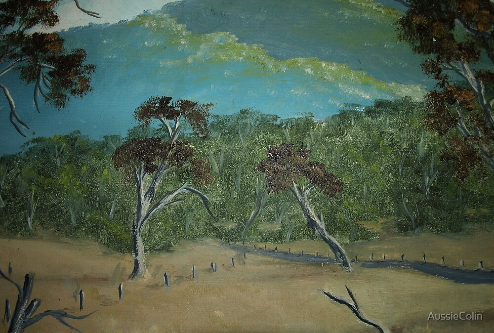AUSTRALIAN LANDSCAPE IN THE BUSH by Colin Van Der Heide