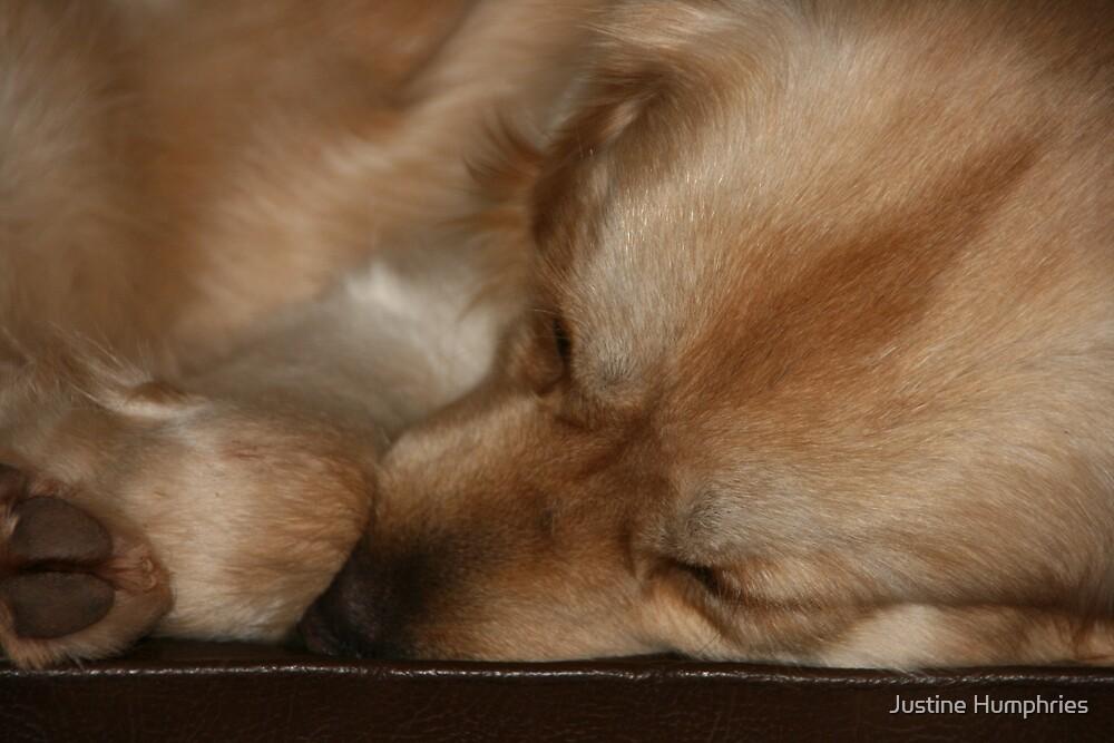 """Leave me to sleep"" by Justine Humphries"
