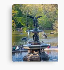 Central Park Water Fountain New York NY Metal Print