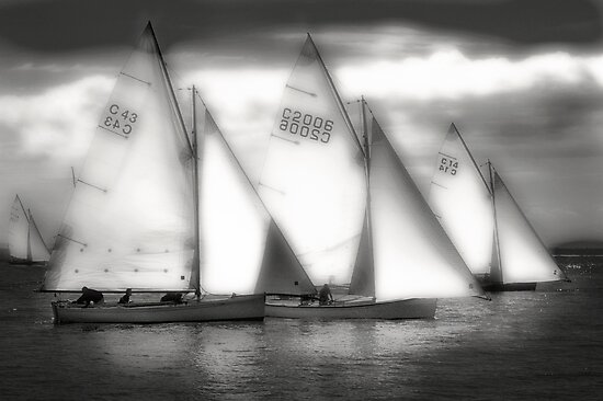 Couta Boats by Craig Mitchell